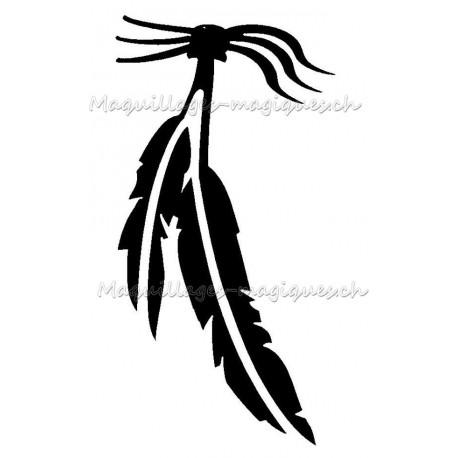Plumes Amérindiennes
