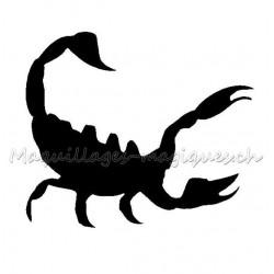 Scorpion danger