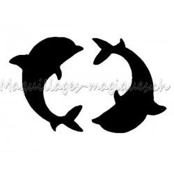 Petit duo dauphins