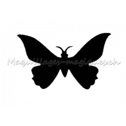 Papillon Uni