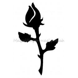 Rose Fermée