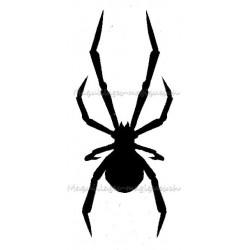 Araignée Veuve-noire