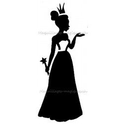 Princesse magique 40801