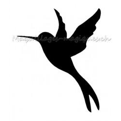 Colibri oiseau-mouche