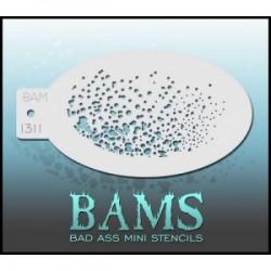 BAMS1311